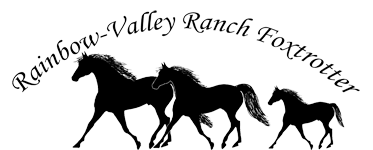 Missouri Foxtrotter von der Rainbow Valley-Ranch